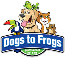 Dogs to Frogs logo